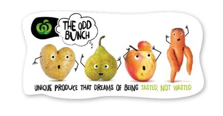 odd_bunch_brand